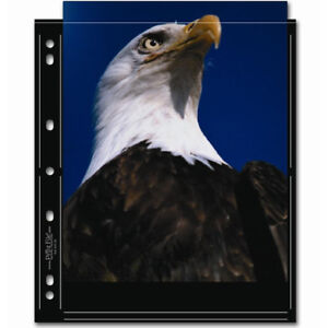 """50 x PRINT FILE 8"""" x 10"""" Photo Pages Sleeves Clear Archival Preservers 810-2S i"""