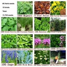 11,735 Herb Seeds 15 Kinds Spices Aromatic Garden Plant Heirloom Lot Kit NON GMO