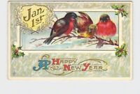 PPC POSTCARD NEW YEARS JANUARY 1ST ROBBINS ON BRANCH HOLLY EMBOSSED