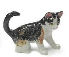 R314C Northern Rose Miniature - Calico Kitten