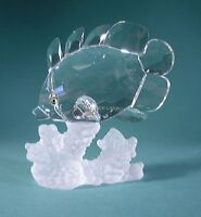 SWAROVSKI CRYSTAL BUTTERFLY FISH ON CORAL 1628888 MINT BOXED RETIRED RARE