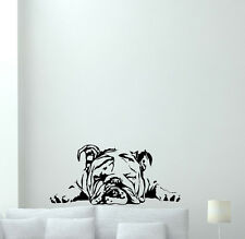 English Bulldog Wall Decal Dog Pet Animals Vinyl Sticker Nursery Decor 113aaa