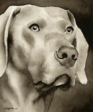 New ListingWeimaraner Art Print Sepia Watercolor Painting by Artist Djr