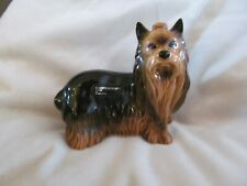 Small coopercraft yorkshire terrier dog