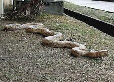 More details for 8-ft python snake serpent figure statue sculpture zoo wild reptile jungle pet