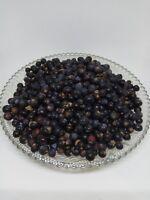 Juniper berries Fruits bay.Dried.Juniperus Communis . Organic.Bio.
