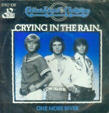 "7"" Cotton Lloyd & Christian/Crying In The Rain (D)"