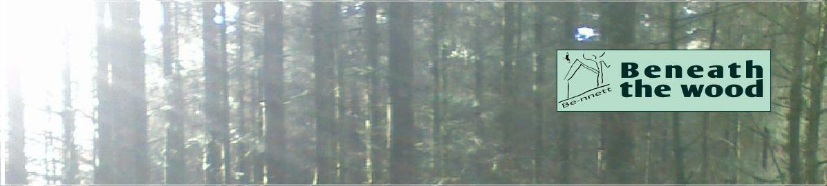 Beneath The Wood