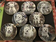 Danbury Mint West Highland Terriers Collector Plate Set by Paul Doyle 8 Plates
