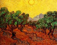 OLIVE TREES WITH YELLOW SKY SUN Vincent Van Gogh Giclee CANVAS PRINT 29x24 in.
