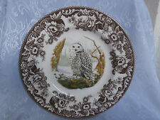 SPODE WOODLAND BIRDS OF PREY WINTER SNOWY OWL 10.75 Inch DINNER PLATE RARE NEW