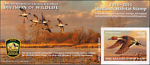 OHIO  #33  2014 STATE DUCK STAMP NORTHERN PINTAIL  By Adam Grimm