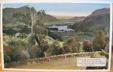Irish Postcard SEARCHING THE DISTANCE Killarney Ireland Placid Majesty Dennis
