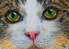 ACEO ORIGINAL CALICO CAT Tortoiseshell big eyes kitty realistic details by EMMA