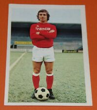 222 DANIEL GOMEZ FC ROUEN DIOCHON AGEDUCATIFS FOOTBALL 1973-1974 73-74 PANINI