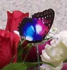 """Garden Decor Flower Pot Plant Pick Stake Colorful Butterfly NEW 12"""" tall #20"""