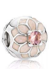 AUTHENTIC PANDORA Silver Charm Bloom Blooming Dahlia Clip Blush Pink 791828  #j