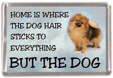 "Pomeranian Dog Fridge Magnet ""Home is Where"" Design by Starprint"