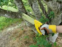 """Giant Limb Hand Saw 25"""" branches tree cutter branch firewood pruner shears logs"""