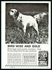 1963 English Setter on Point Purina Dog Food Vintage Photo Ad