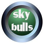 skybulls-002