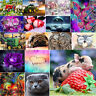 5D DIY Full Drill Square Diamond Painting Animal Cross Stitch Embroidery Gift