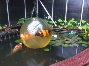 koi dome garden feature health checker gold fish pond sphere