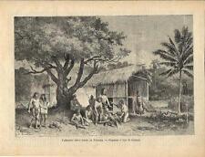 Stampa antica PANAMA villaggio di indigeni 1886 Old antique print