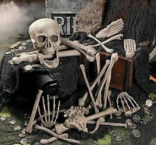28 pc Bag of Bones Plastic Human Skull Skeleton Halloween Pirate Party Decor