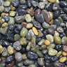 LYTIO Decorative Pebble Rocks Different Colors and Sizes