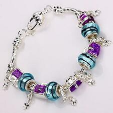 wholesale 925European Murano Glass Beads Silver Charm Bracelet +Gift Box  PXB035