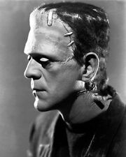 Boris Karloff Photo 8x10 - Bride Frankenstein 1935  B&W - Buy Any 2 Get 1 Free
