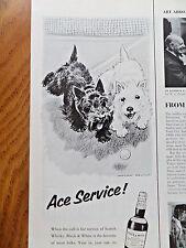 1958 Black White Scottish Scotty Terrier Westie Ad Tennis