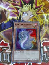 Carte Yu-Gi-Oh! Evoltile Najasho ORC-FR083 1st Super Rare Française / french