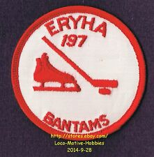 LMH PATCH Badge ELK RIVER YOUTH HOCKEY Assn ERYHA BANTAMS 1970s Stick Skate Logo