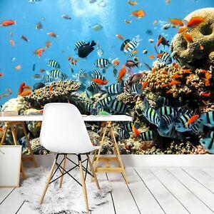 Vlies Fototapete Korallenriff Fische Ozean Meer Aquarium Tapete Unterwasserwelt