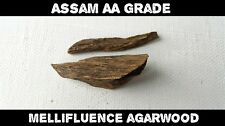 Assam AA grado gr de madera noble indonesia-incienso terroso con sabor a fruta-Áloe Madera/Oud - 2g