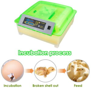 56 Egg Incubator Digital Hatcher Turning Automatic Temperature Control Poultry