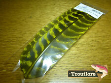 YELLOW OZARK BARRED TURKEY QUILL FEATHERS NATURE'S SPIRIT FLY TYING QUILLS NEW