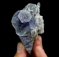182.4g WOW!!Natural rare purple blue fluorite crystal Mineral Specimen/China