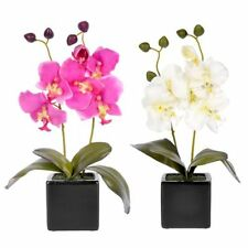 Orchid Faux Silk Potted Dried & Artificial Flowers