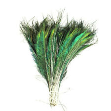 10 Pcs Natural Peacock Feather 30-35cm Wedding Halloween Decorative Feathers