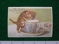 1870s-80s The Arcade Boot & Shoe Store Kitten Milk Victorian Trade Card F28