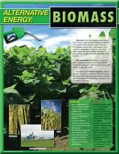 Educational Classroom Poster Science Alternative Energy Biomass Primary Middle
