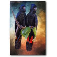 Red Tail Cockatoo Pair Acrylic Wall Art Bird Black Print Painting Hanging 90cm