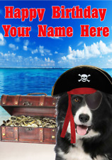 Border Collie Dog j595 Pirate Fun Cute Personalised a5 Happy Birthday card
