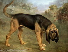 1909 L.Cheviot~Large Bloodhound Puppy Dog~ NEW Large Note Cards