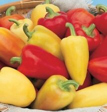 Sweet Hungarian Pepper Seeds!       50 SEEDS