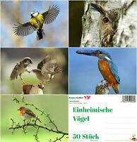 """""""EINHEIMISCHE VÖGEL"""": Postkarten-Set (5 Motive je 10 St.) ideal für Postcrossing"""