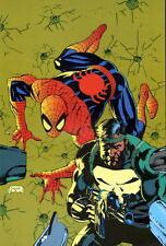 Jim Lee Marvel Pin Up Print PUNISHER & AMAZING SPIDER-MAN 1991